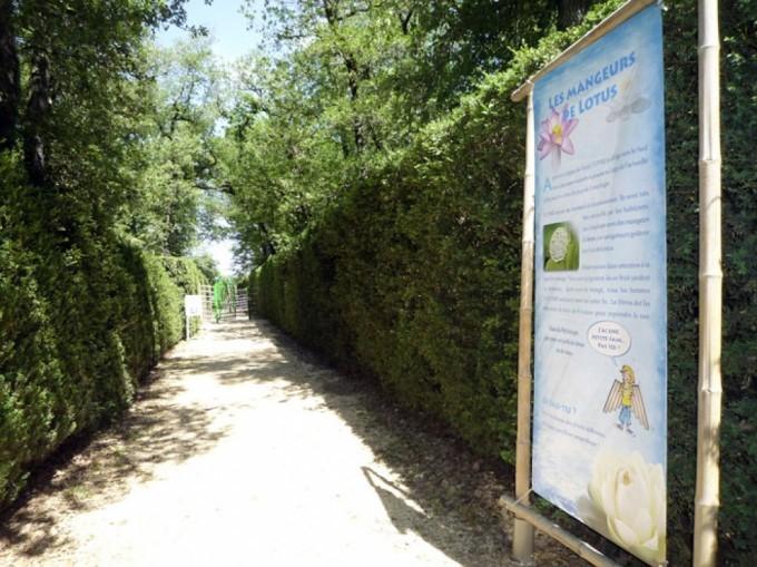 Dans le Parc du Château de Merville