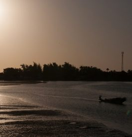 Voyage Sénégal vidéo