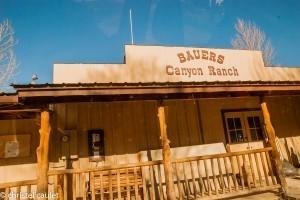 Hébergement insolite : une nuit au ranch