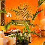Où manger à Toulouse ? Découvrir le Restaurant Le Métropolitan à Toulouse