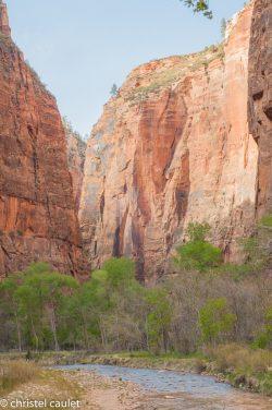 Voyage aux Etats-Unis : Découvrir le Zion Canyon