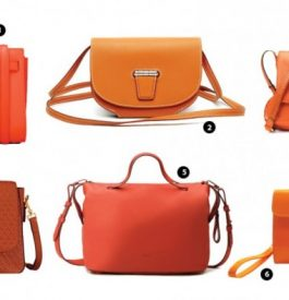 Posséder un sac orange