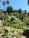 Le jardin botanique Marimurtra à Blanes
