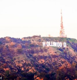 Arpenter Mulholland Drive à Los Angeles