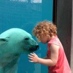 Le Zoo sauvage de Saint Félicien