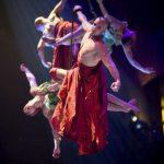 Les 5 meilleurs shows de Las Vegas