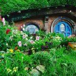 Sur les traces du Hobbit en Nouvelle Zélande