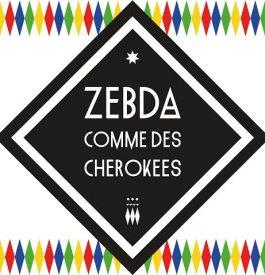 Concert de Zebda