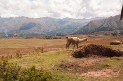 Paysages à couper le souffle dans la vallée sacrée des Incas au Pérou !