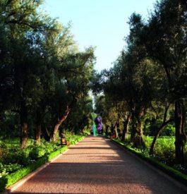 Exposition à la Mamounia à Marrakech par Julien Marinetti