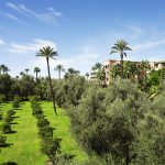 Se rendre à la Mamounia à Marrakech