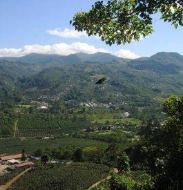 Virée écolo au Costa Rica