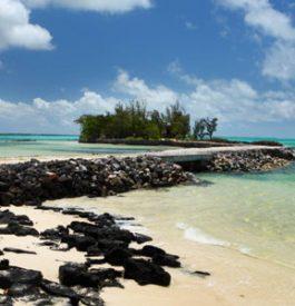 Partir sur une île ?