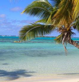 Trouver Tahiti, la perle du Pacifique