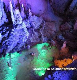 Rejoindre le fond de la grotte de la Salamandre