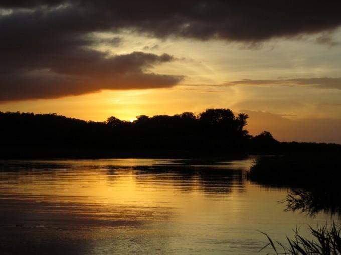 Guyane - Au cœur des marais des Kaw
