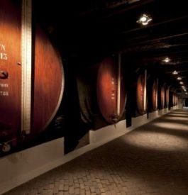Visite des caves du Porto Sandeman