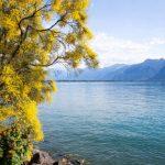 Prendre le temps à la Suisse