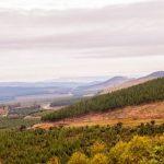 Voyage en Afrique du Sud à Blyde River Canyon