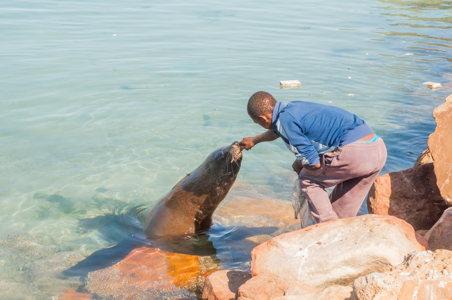 Voyage Afrique du Sud - Cape Town