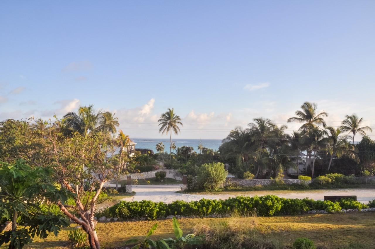 La vue panoramique depuis ma terrasse du Pineapple Fields
