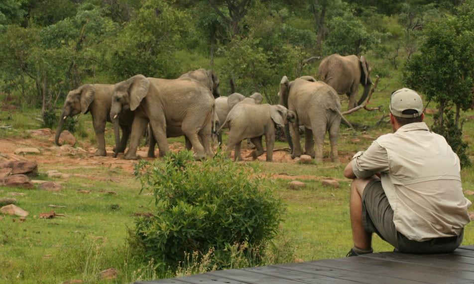 La pause Makweti - voyage en Afrique du Sud