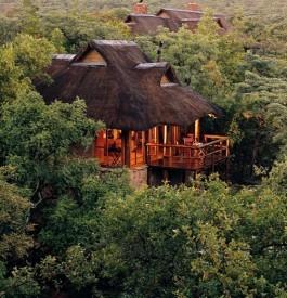Se rendre à la réserve Makweti