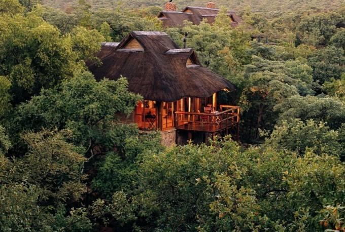 Un safari photo à Makweti pendant un voyage en Afrique du Sud