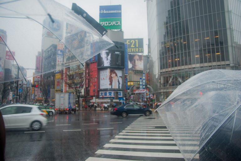 Passage clouté Shibuya-Tokyo-Japon