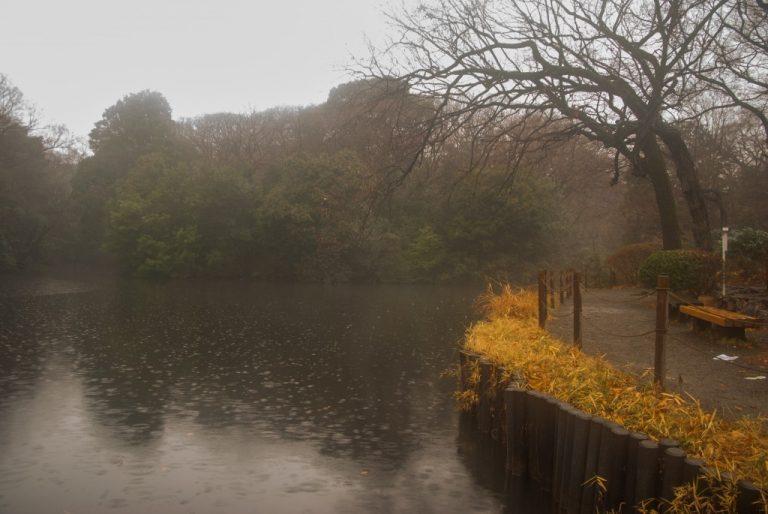 Lac impérial Tokyo Japon