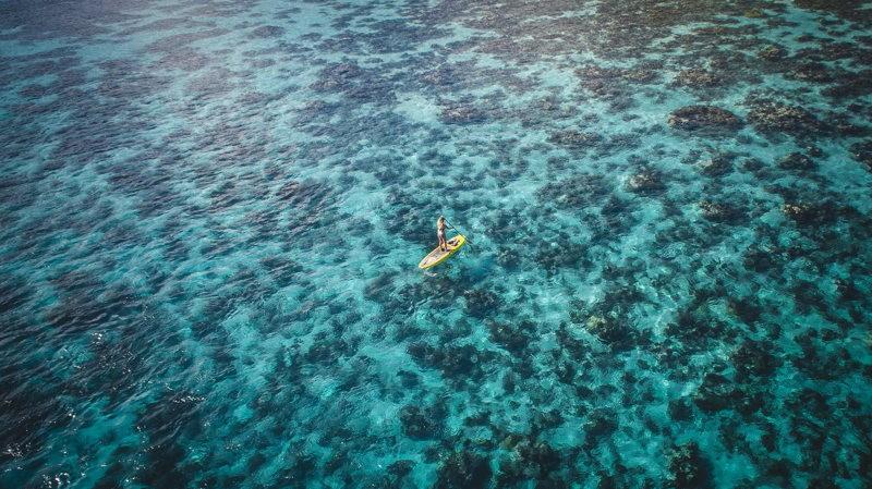Océan Bahamas Pauline World Else