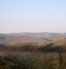 Le Safari luxe Afrique du Sud à faire impérativement