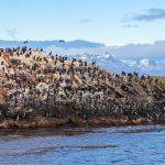 Découvrir Ushuaïa