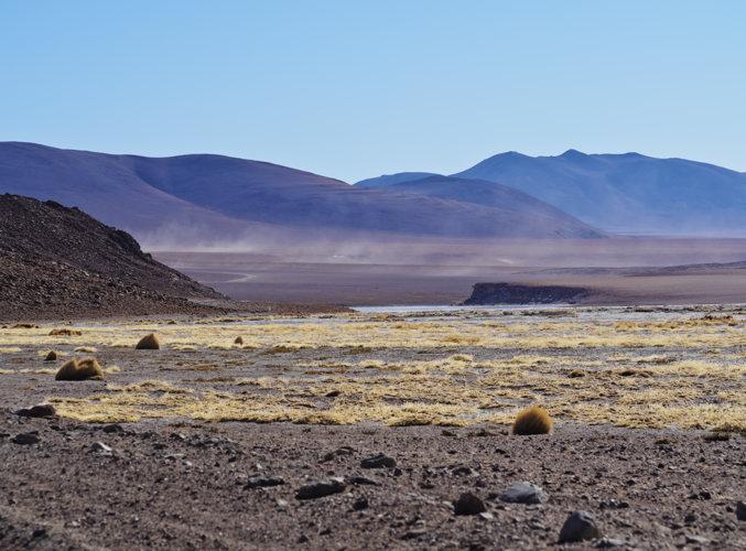 Des paysages désertiques magnifiques en Bolivie