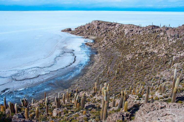 Inca Wasi - Salar de Uyuni - Bolivie