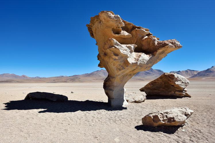L'arbre de pierre - road-trip Bolivie
