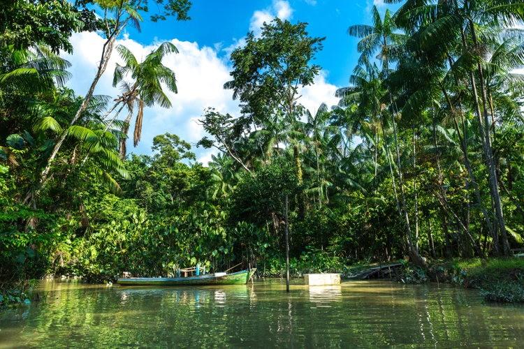 Naviguer en pirogue sur l'Amazone
