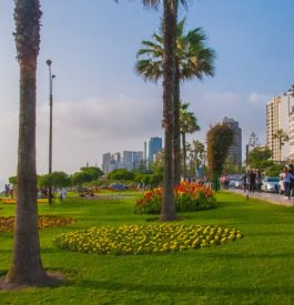 Plage et nouveaux quartiers proposent de nouveaux espaces fort agréables à vivre !