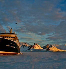 Découvrir l'Antarctique en croisière