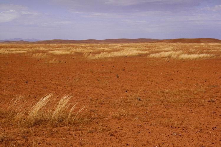Décor de sable dans l'outback