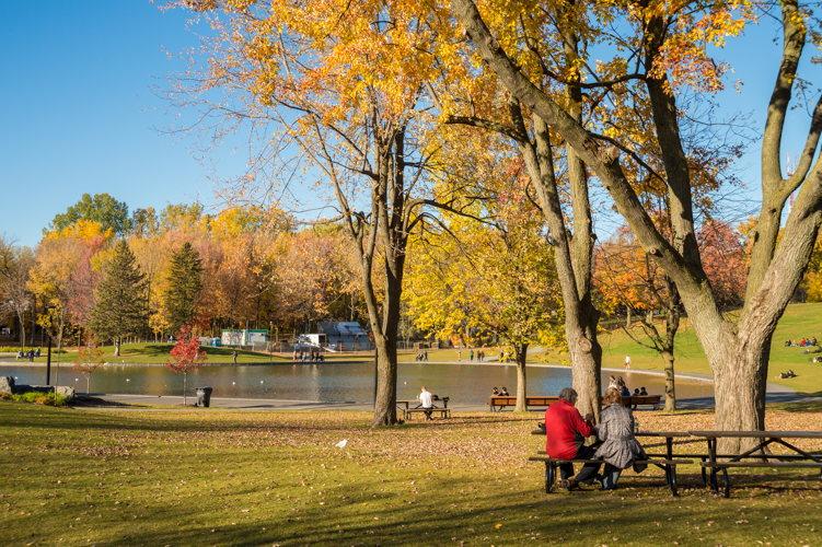 Une petite balade dans le Parc Mont Royal, cela vous tente ?