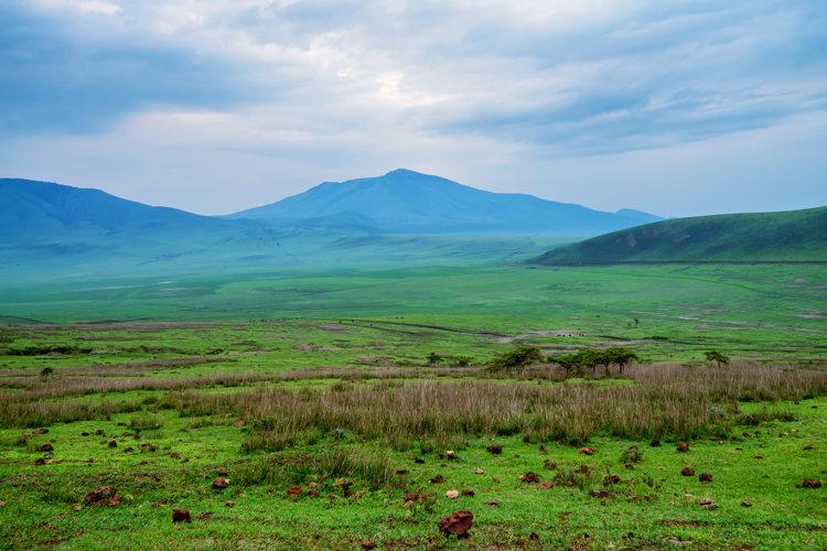 La Tanzanie mieux que dans mes rêves les plus fous
