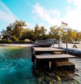 Dénicher l'île des Cocos à l'île Maurice
