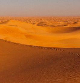 Dans le désert des dunes de sable à Dubaï