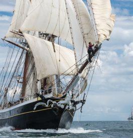 Les grandes voiles du Havre