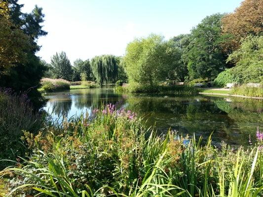 Découvrir Regent parc... à Londres