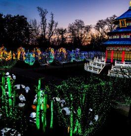 Découvrir le festival des Lanternes à Gaillac