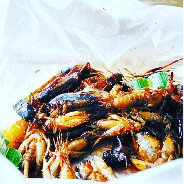 Manger des insectes en Thaïlande