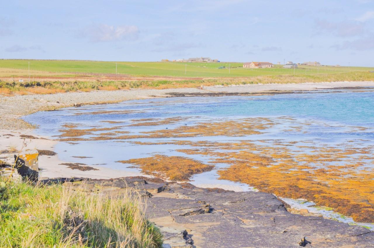 Observer le calme de cette île en Écosse