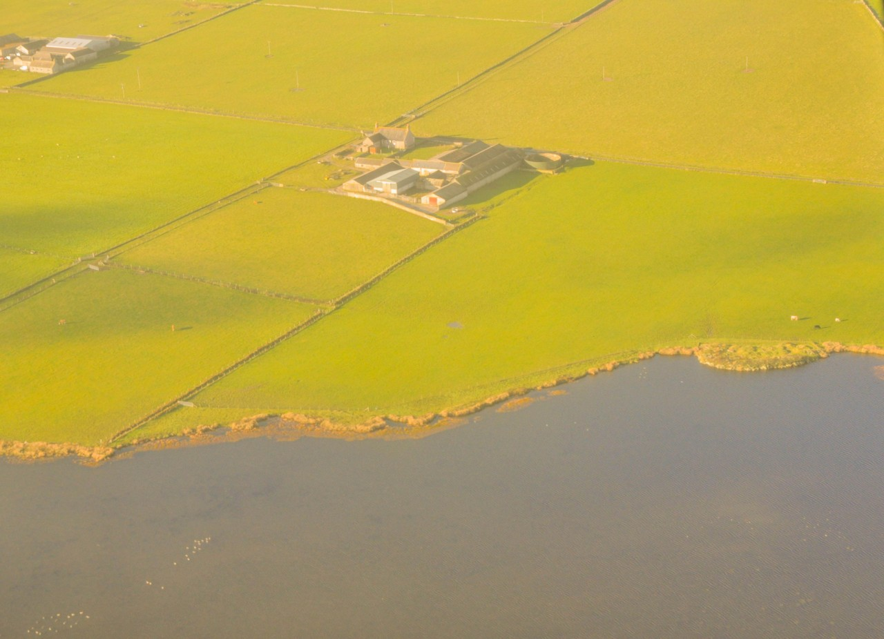 Papa Westray en Écosse, c'est 111 familles solidaires qui vivent sur une île où l'agriculture est la principale activité